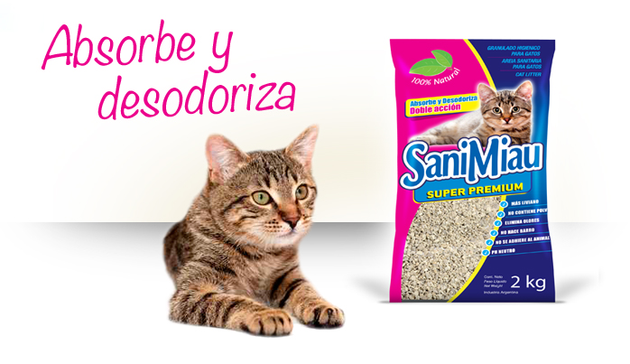 gatos scoop